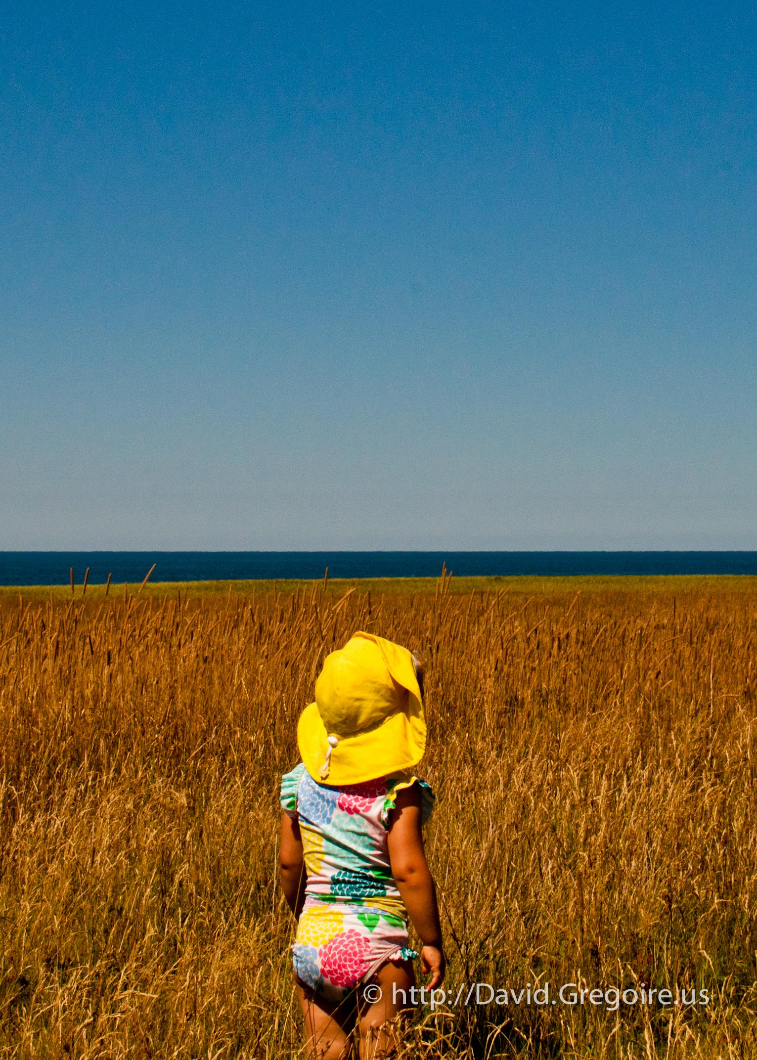 Bébé regarde les champs de l\'Étang-du-Nord